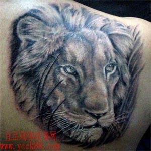后肩背纹身图案:肩背黑白狮子纹身图案图片