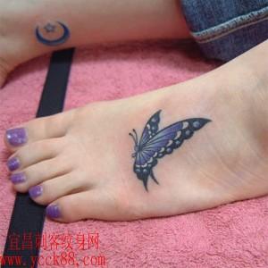 蝴蝶纹身图案大全